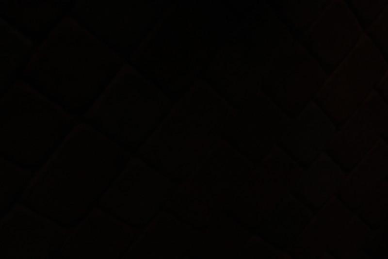 Anniversary 2012 Red Carpet-1847.jpg
