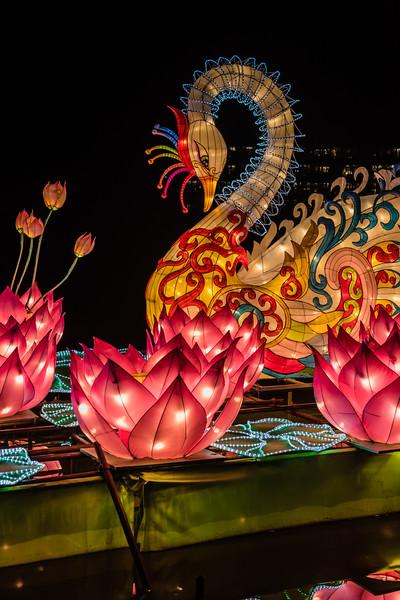 Chinese Lantern Festival-5295.jpg