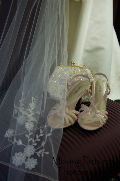 Shoes and veil