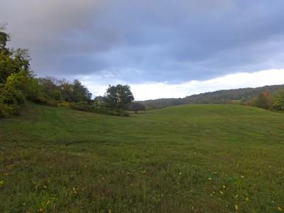Brookfields Farm