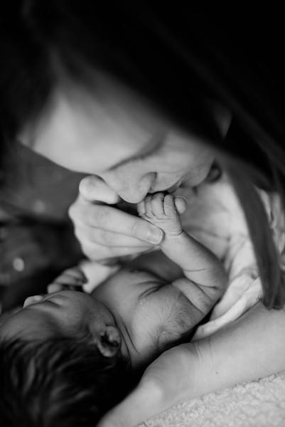 Harper's newborn session