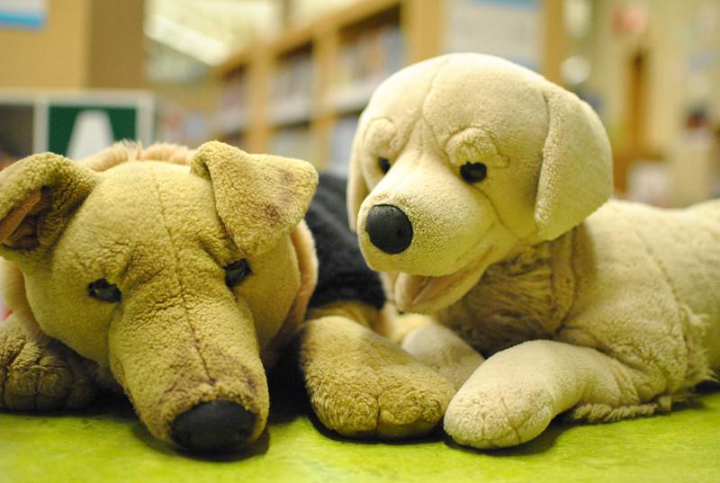 A Dogs Life.jpg