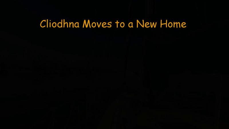 161229 Cliodhna Moves to a New Home - Segment 2