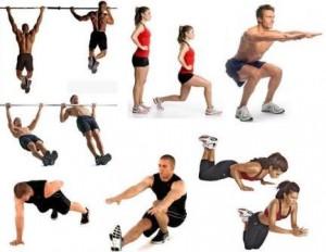 bodyweights
