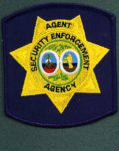 South Carolina Security Enforcement Agency