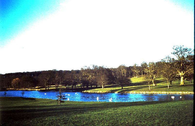 1959-3-15 Lake @ Longleat House, Somerset.JPG