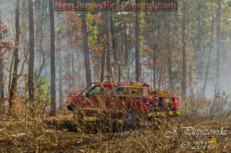3-8-2017(Camden County)PINE HILL 1071 Turnerville Rd- Brush