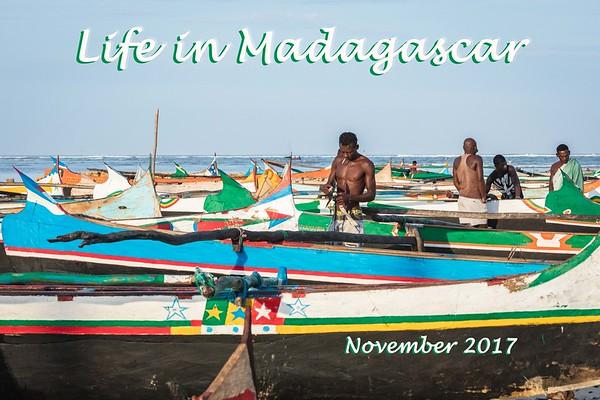 Madagascar Life 2017