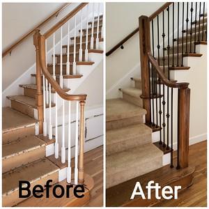 Mr. Darwin's Staircase Remodel