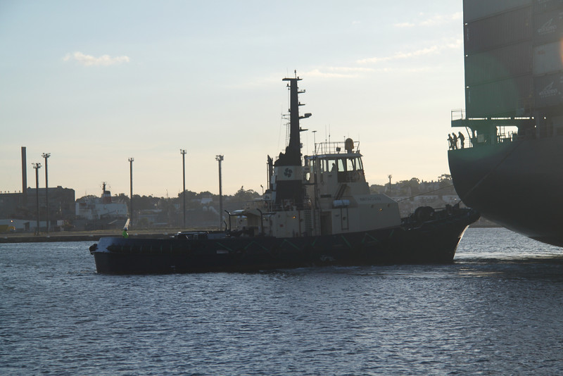Katsuragi in Port Jackson 156.jpg