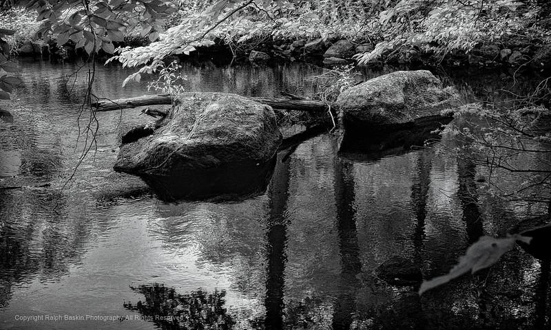 Mianus River 011