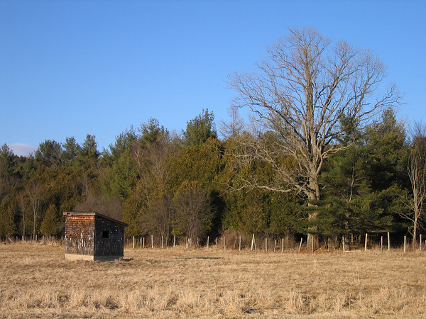 Lonely Shed and Phillips Farm