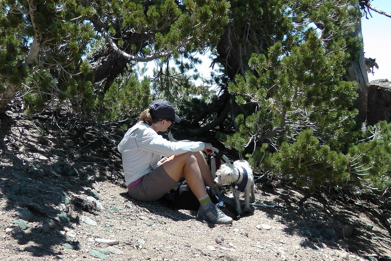 Finding some shade at the summit