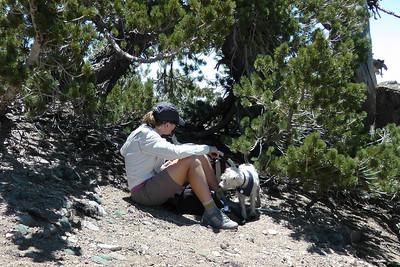 Mt. Baden-Powell Trail, June 20, 2010