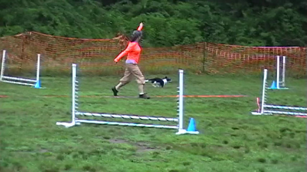 2013-07-13 and 14 Agility Videos  - NADAC St. Huberts