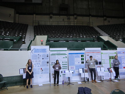 Twin Cities Regional Science Fair
