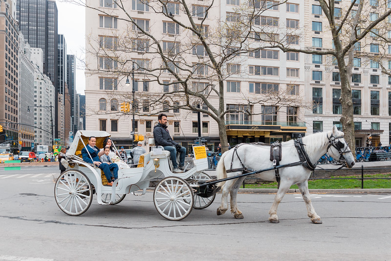 Central Park Wedding - Diana & Allen (15).jpg