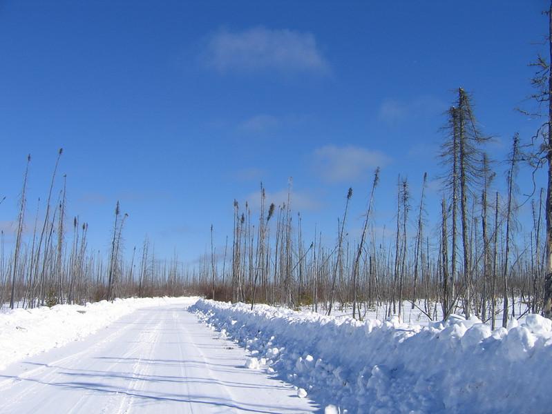 IMG_2757_main_winter_road_resize.JPG