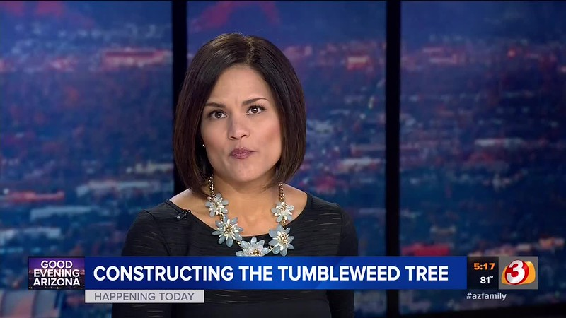 11-05-18 KTVK_17.17.54 Tumbleweed Tree.mp4