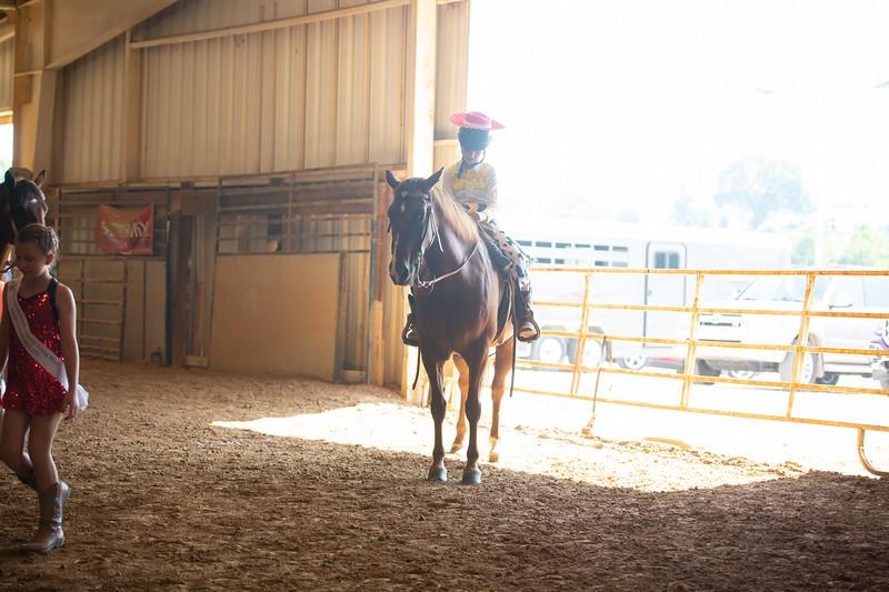 HorseCostume-50.jpg