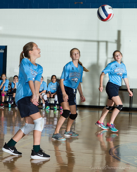 willows middle school volleyball 2017-812.jpg