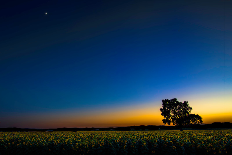 Night Sunset W Moon_DSC0838-HDR.jpg