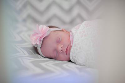 Maya Newborn 2014