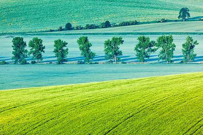 South Moravia, Czech Republic