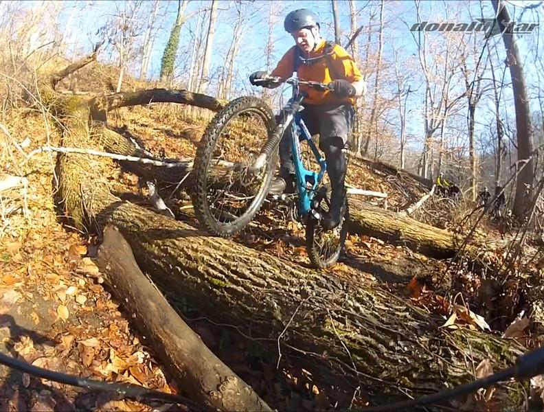 log ride 9.jpg