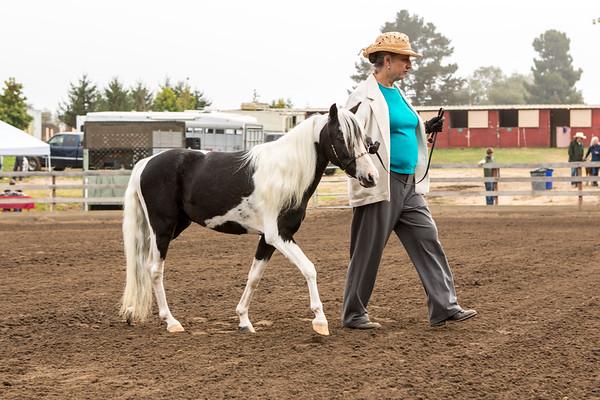 Santa Cruz County Fair 8/15/12