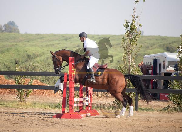 Gentleman Rider- Unknown Number