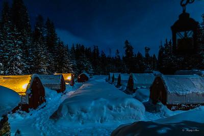 Winter In Yellowstone NP Movie