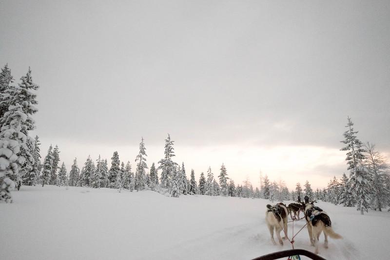 Finland_160116_46.jpg
