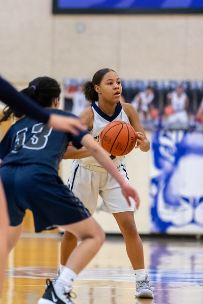2020-02-12 -- Twinsburg Girls Junior Varsity Basketball vs Hudson High School Junior Varsity Basketball