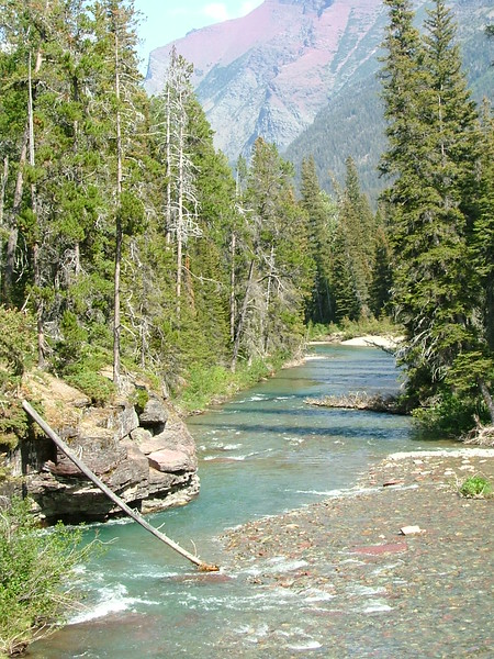 2008-07-24-YOCAMA-Montana_3640.jpg