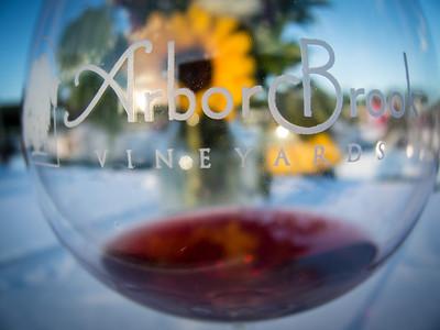 2013 ArborBrook Picnic