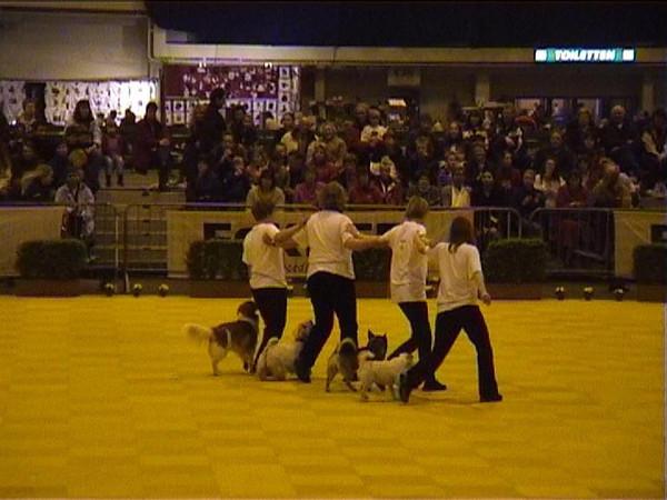 21 februari 2004 Dogdancewedstrijd Leiden