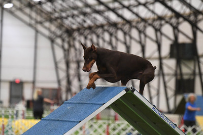 Berks County DTC AKC Agility Trial October 16-17