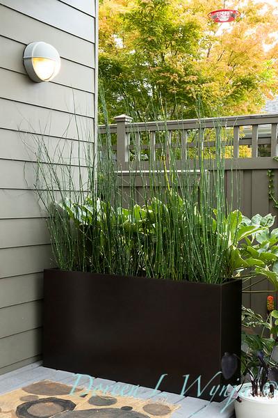 Lisa Bauer - designer's garden_1270.jpg