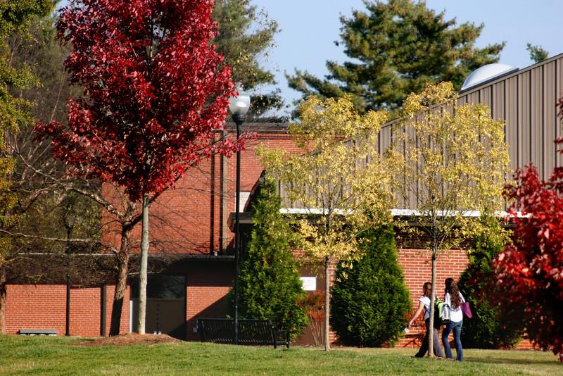 Gardner-Webb University students walking across campus on a Fall day.