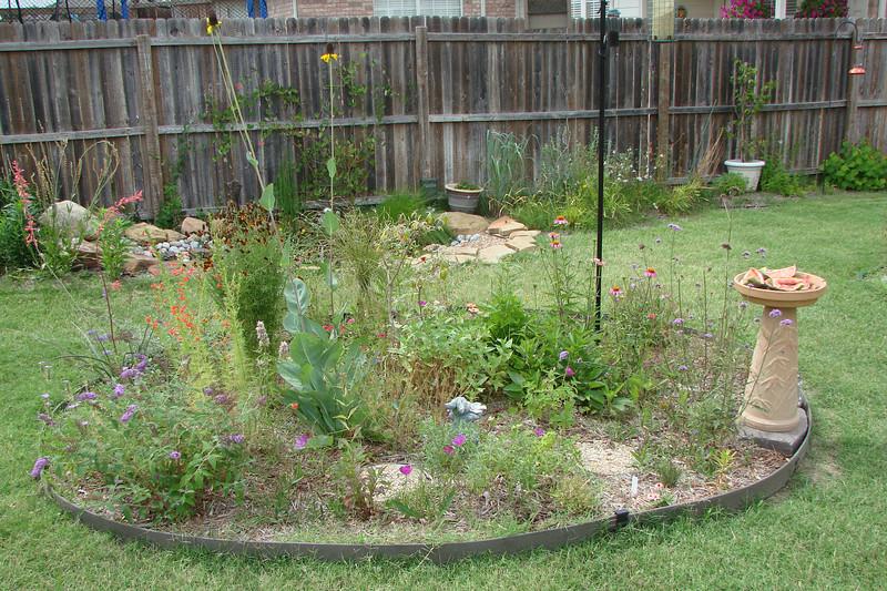isalnd butterfly garden