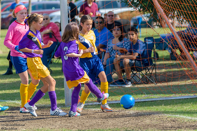 AYSO Soccer Playoffs 10-29-2016