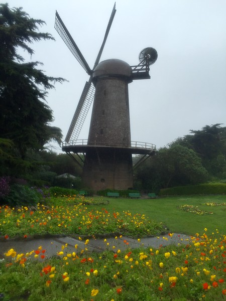 Hazy morning... and the Dutch Windmill