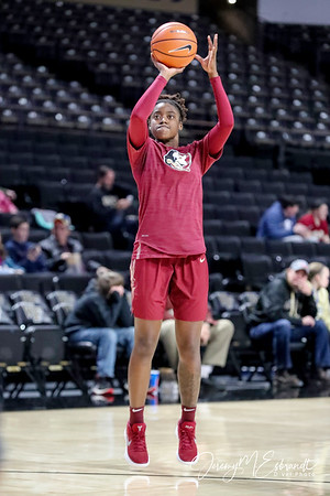 FSU WBB vs Wake Forest - 01-18-2018