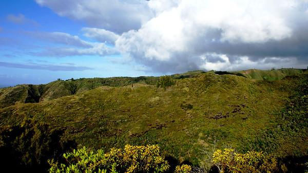 Dale's Hawaii Loa Photos