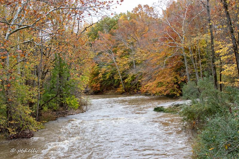 Black River 102420.jpg