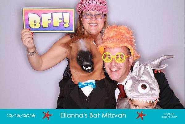 2016-12-18 Elie's Bat Mitzvah