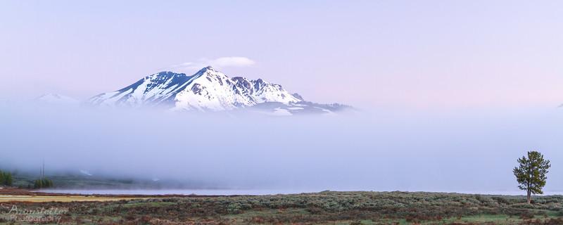 Electric Peak Fog