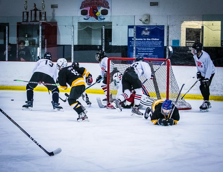 Bruins2-239.jpg