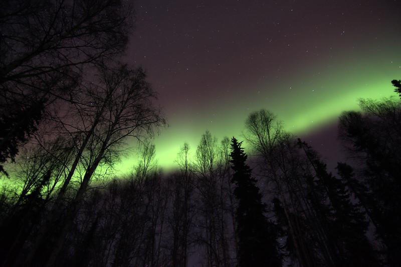 Brighter Aurora